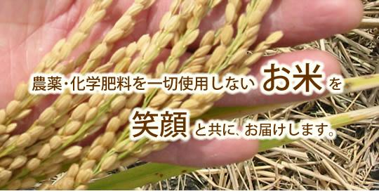 農薬・化学肥料を一切使用しないお米を笑顔と共にお届けします