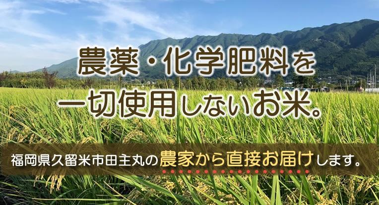農薬・化学肥料を一切使用しないお米